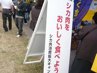 P1060030.jpg