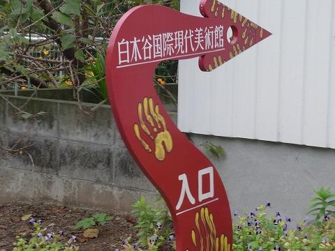 a-yuzuRIMG5595.jpg