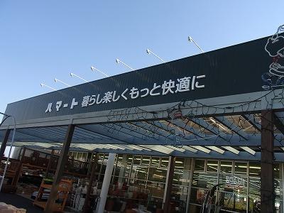 aa-yuzu12RIMG8632.jpg