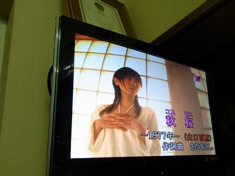 aaaaa-yuzuRIMG6088.jpg