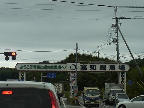 aaaaaaaaaaa-yuzuRIMG6869.jpg