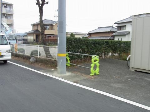 aaaaaaaaaaaa-yuzuRIMG6845.jpg
