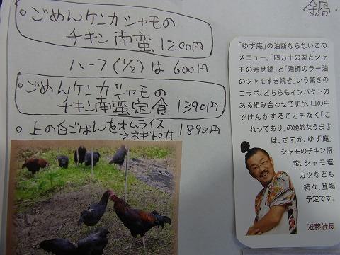 aaaaaaaaaaaa-yuzuRIMG7242.jpg