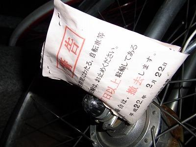 aeabxz-yuzuRIMG1498.jpg