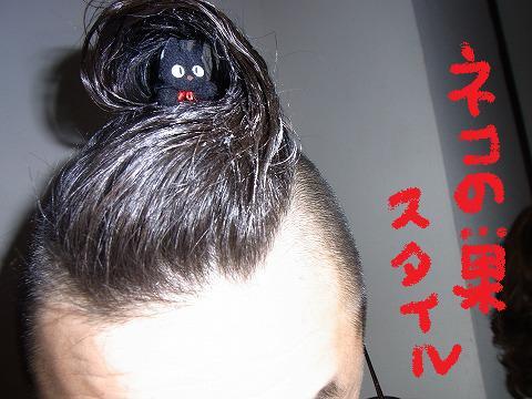 azg-yuzuRIMG0724.jpg