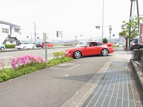 fer-yuzuRIMG2007.jpg