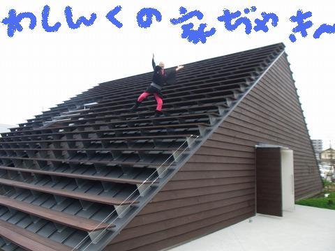gg-yuzuRIMG0607.jpg