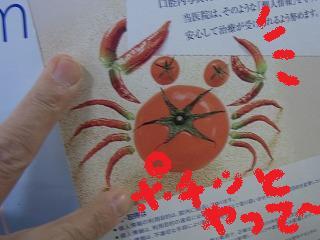 gg-yuzuRIMG1002.jpg