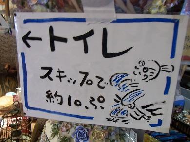 k-yuzuRIMG1667.jpg