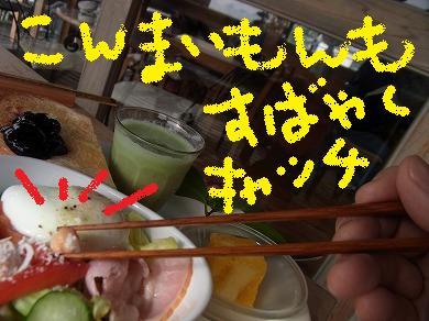 k-yuzuRIMG1842.jpg