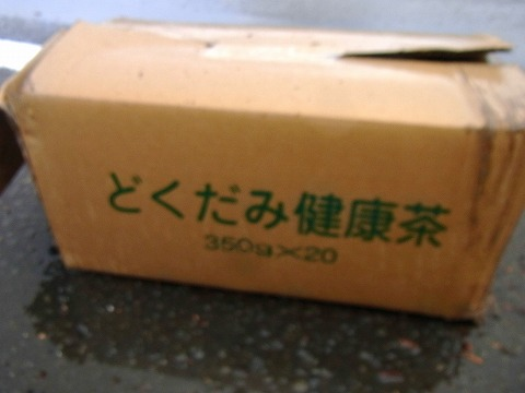 ll-yuzuRIMG1354.jpg