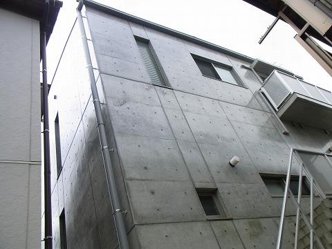 llo-yuzuRIMG1154.jpg
