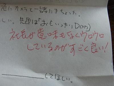 qbqv-yuzuRIMG1850.jpg