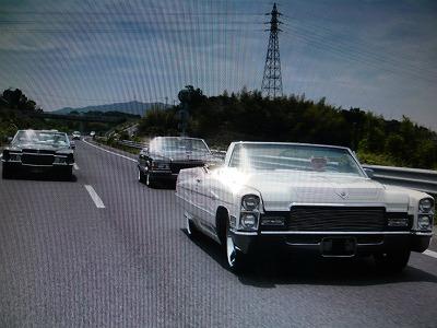 s-yuzuP1040364.jpg