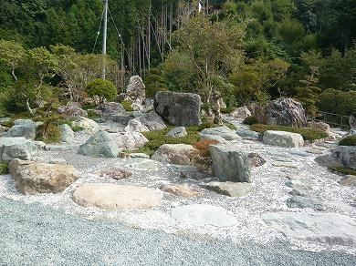 s-yuzuP1040525.jpg