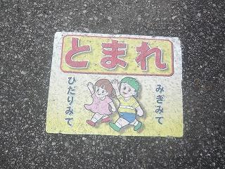s-yuzuP1050023.jpg