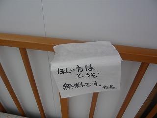 s-yuzuP1050056.jpg