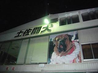 s-yuzuP1050244.jpg