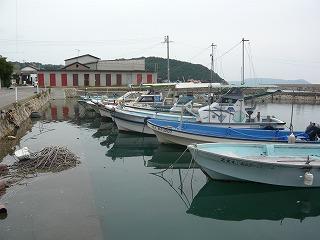 s-yuzuP1050300.jpg