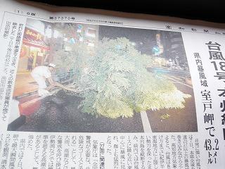 s-yuzuP1050507.jpg