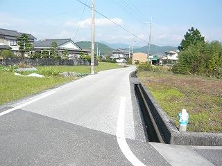 s-yuzuP1050729.jpg