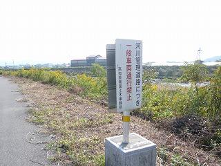 s-yuzuP1050732.jpg