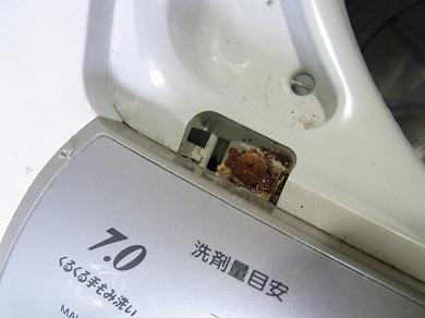 ssa-yuzuRIMG1286.jpg