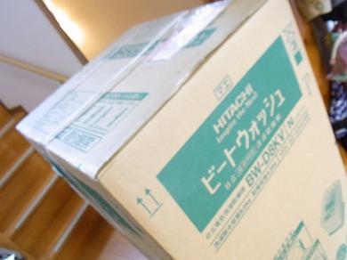 ssa-yuzuRIMG1301.jpg