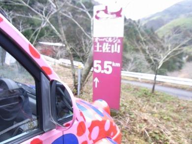 ssa-yuzuRIMG1328.jpg