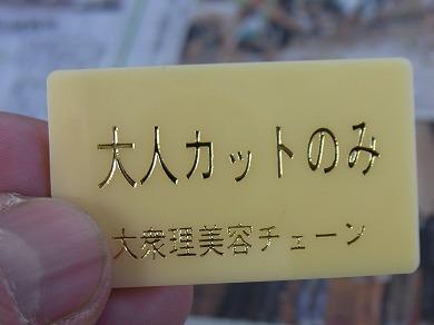 sysa-yuzuRIMG1644.jpg