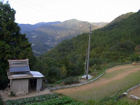 zwww-yuzuRIMG5967.jpg