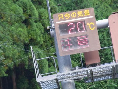 zwww-yuzuRIMG5978.jpg