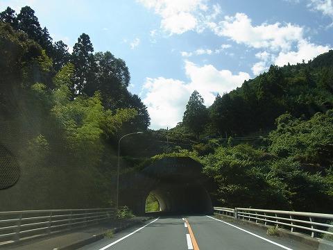 zzwww-yuzuRIMG4614.jpg