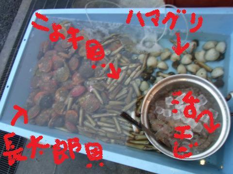 zzzz-yuzuRIMG0626.jpg