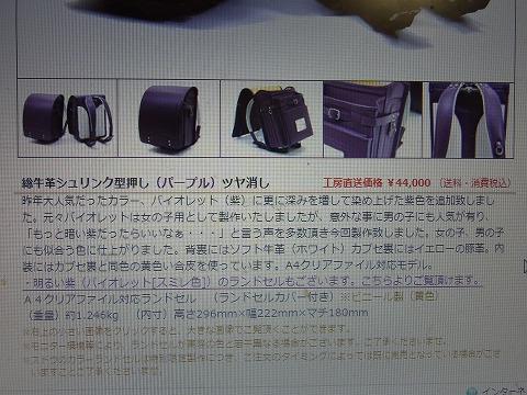 zzzzzzz-yuzuRIMG4241.jpg