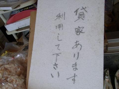 zzzzzzzzzzzzzzzz-yuzuRIMG5649.jpg